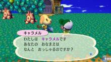 Imagen 92 de Animal Crossing: Let's Go To The City