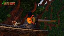 Imagen Donkey Kong Country: Tropical Freeze