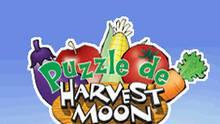Imagen 7 de Puzzle de Harvest Moon