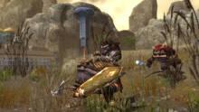 Imagen 43 de Guild Wars Nightfall