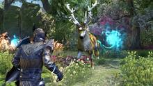 Imagen 178 de The Elder Scrolls Online: Tamriel Unlimited