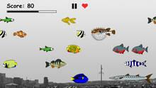 Imagen Hungry Games: Survive in a world of predatory fish