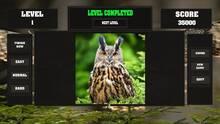 Imagen 4 de Fitzzle Wise Owls