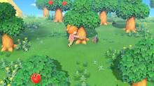 Imagen 6 de Animal Crossing: New Horizons
