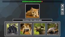 Imagen 4 de Repeat the image: Animals