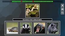 Imagen 5 de Repeat the image: Animals