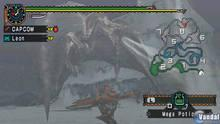 Imagen 100 de Monster Hunter Freedom Unite
