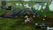 Imagen 98 de Monster Hunter Freedom Unite