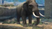 Imagen 7 de Zoo Hospital