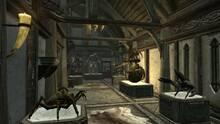Imagen 199 de The Elder Scrolls V: Skyrim