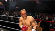 Imagen 18 de Mike Tyson Heavyweigth Boxing