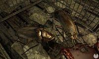 An expert explains why roaches are attracted by PS4