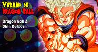 Summer Dragon Ball: Dragon Ball Z Shin Butōden